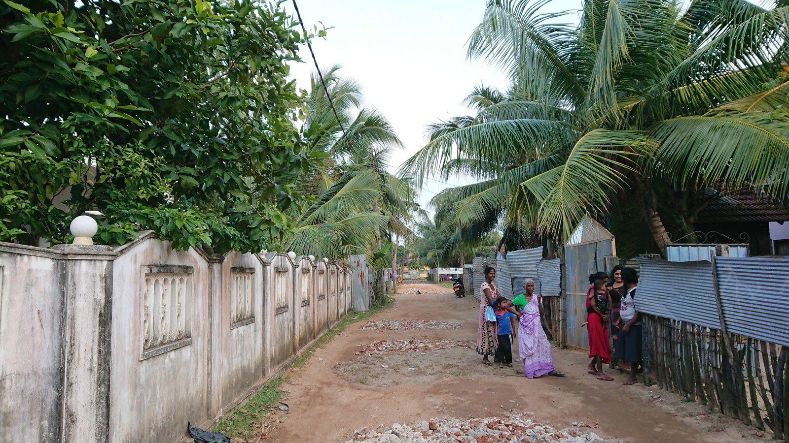 Sri-Lanka en 2019-le thé-de la côte est vers le nord