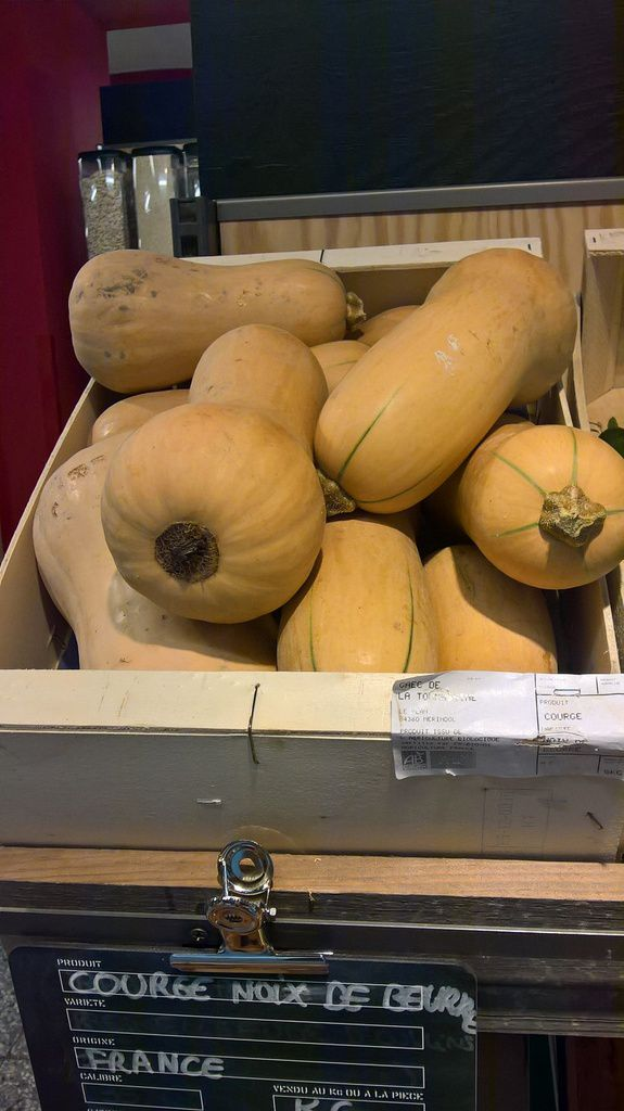 Courges butternut
