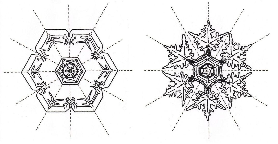 cristaux de neige avec leurs 6 axes de symétrie