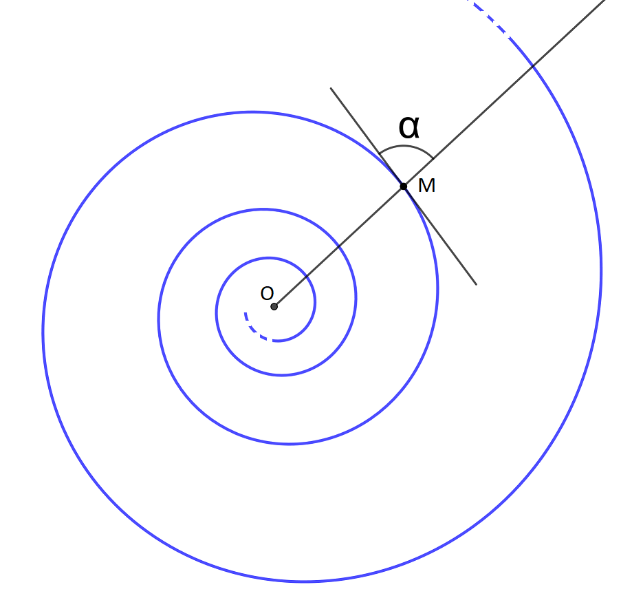 Figure 5 : angle tangente-rayon polaire sur une spirale