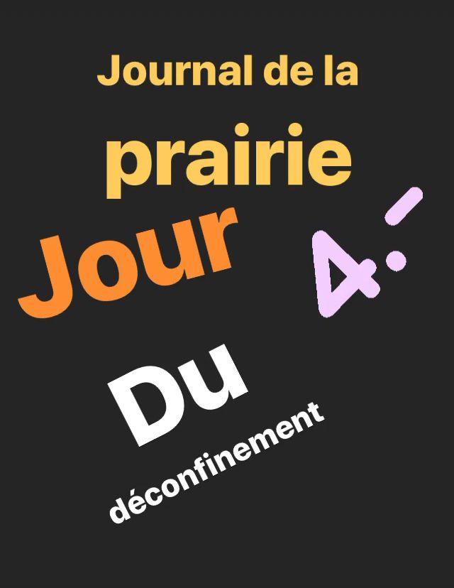 Journal de la prairie jour 4 déconfinement