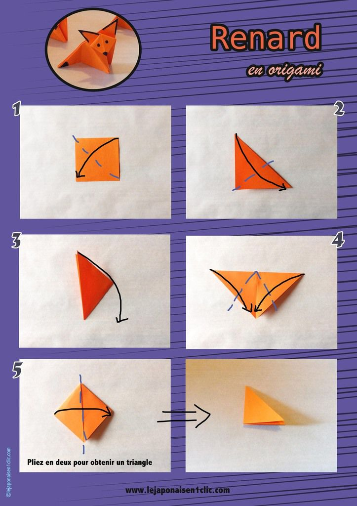 #headtrick #origami # babi #leblogdeippikicat