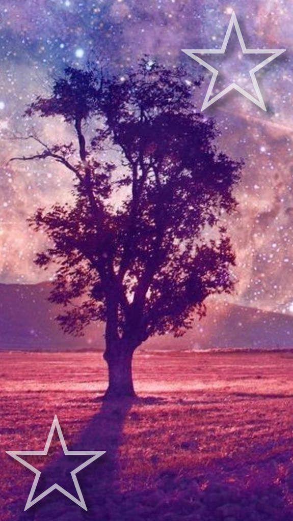 arbre star