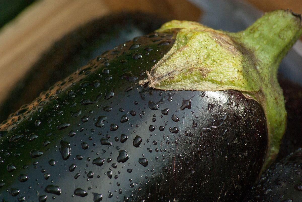 aubergines préparartion facile
