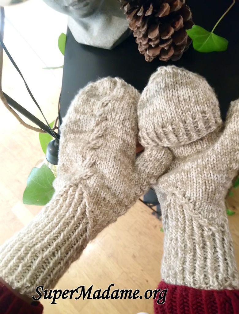 modèles tricot mitaines moufles convertibles Albiera