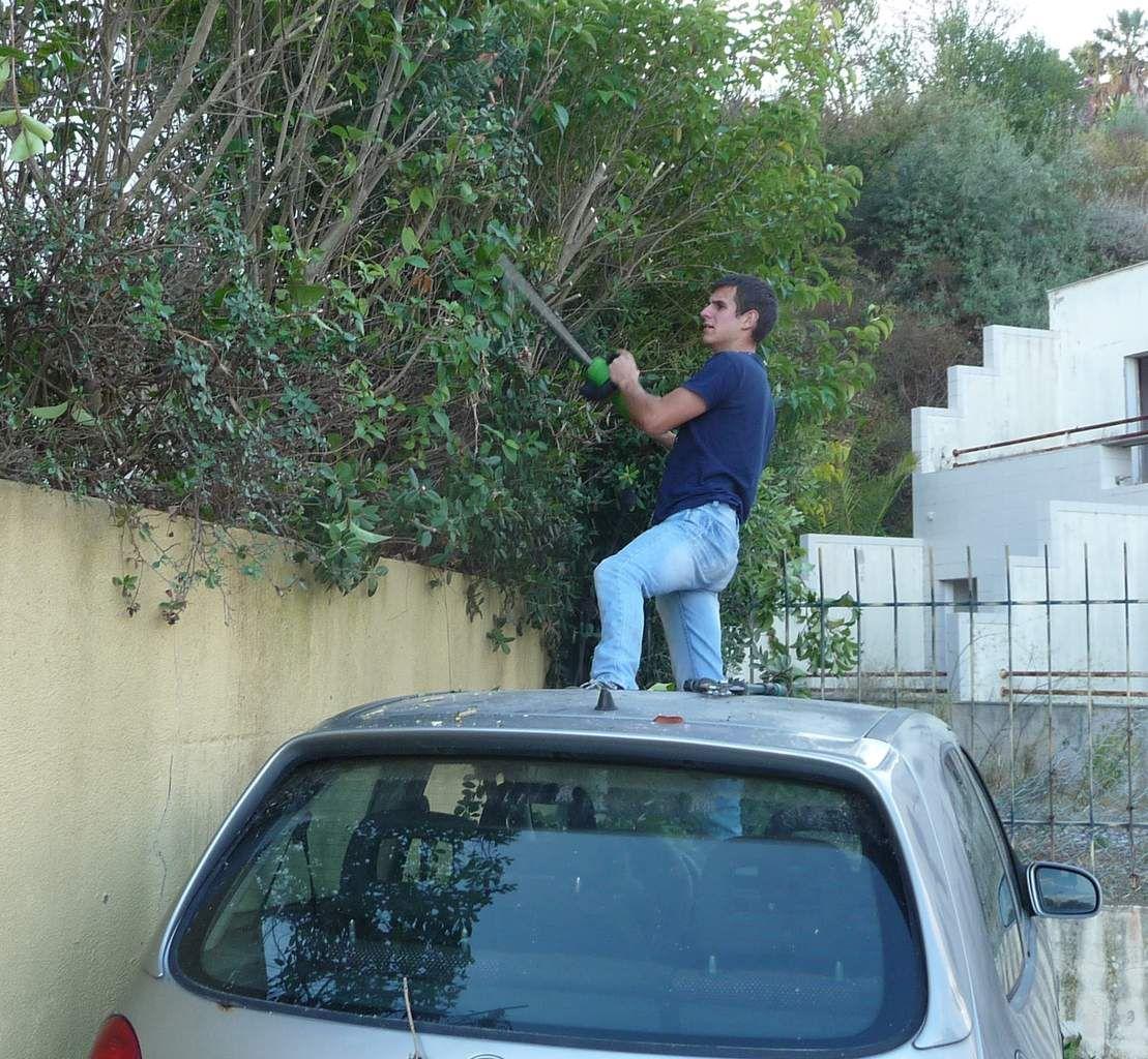 Mon jardinier préféré en plein travail