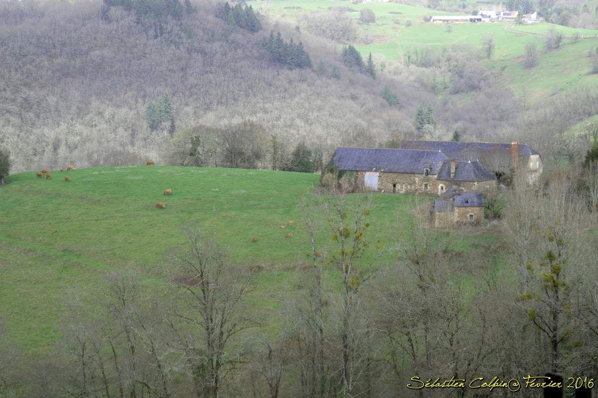 Dampniat est cité au XIIIe siècle pour ses « maisons de recluses », c'est-à-dire un couvent de femmes dépendant d' Aubazine. Paroisse annexée au prieuré de Brive au XIVe siècle.  En plus de la gare d' Aubazine, encore en service, située sur la commune de Saint-Hilaire-Peyroux, Dampniat possédait une autre gare ferroviaire, la gare du Bourret, située sur la ligne Beaulieu - Aubazine, qui a fonctionné de 1912 à 1932.