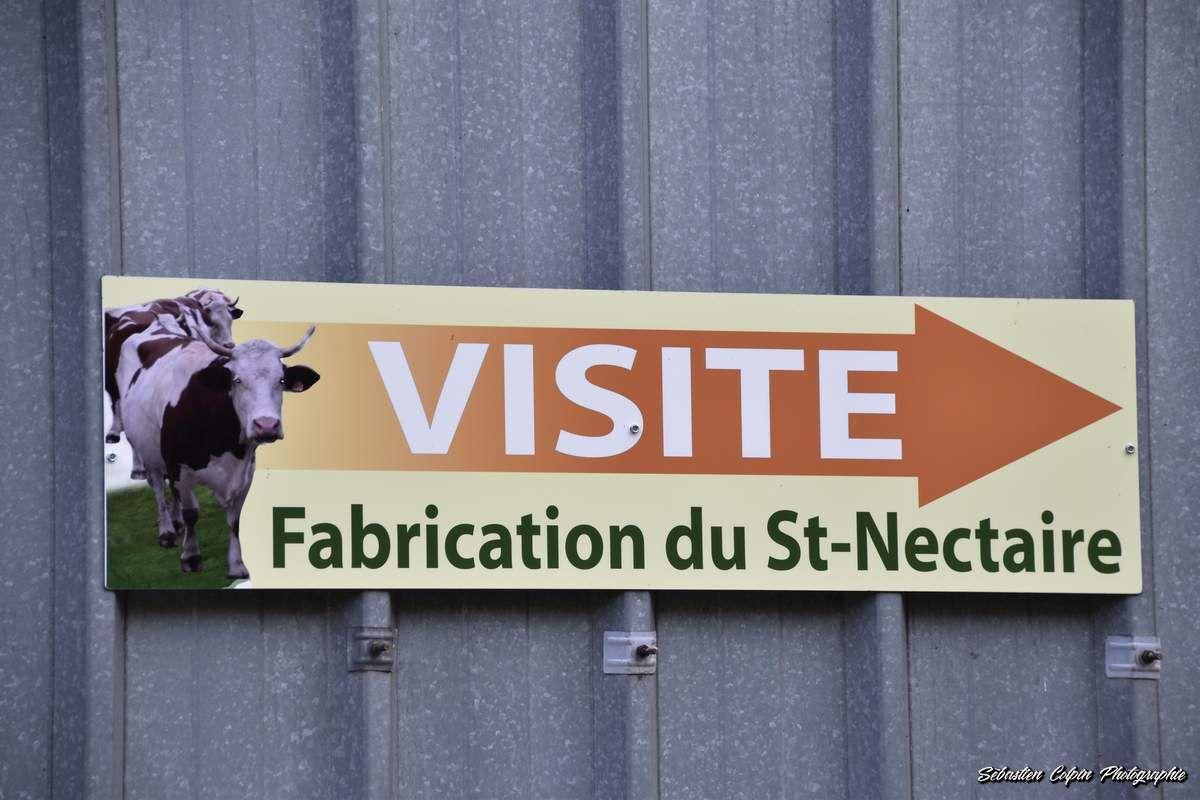 Saint-Nectaire, le mystère des Farges et la Ferme Bellonte dans le Puy de Dôme