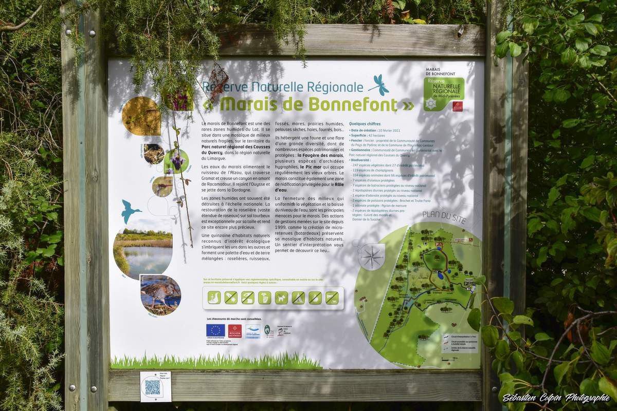 Marais de Bonnefont, réserve naturelle régionale dans le Lot