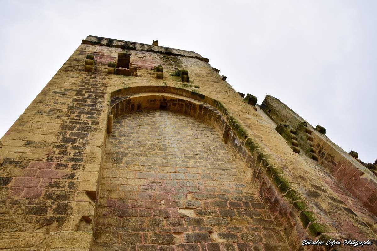 Vestiges du Château de Carlux en Dordogne