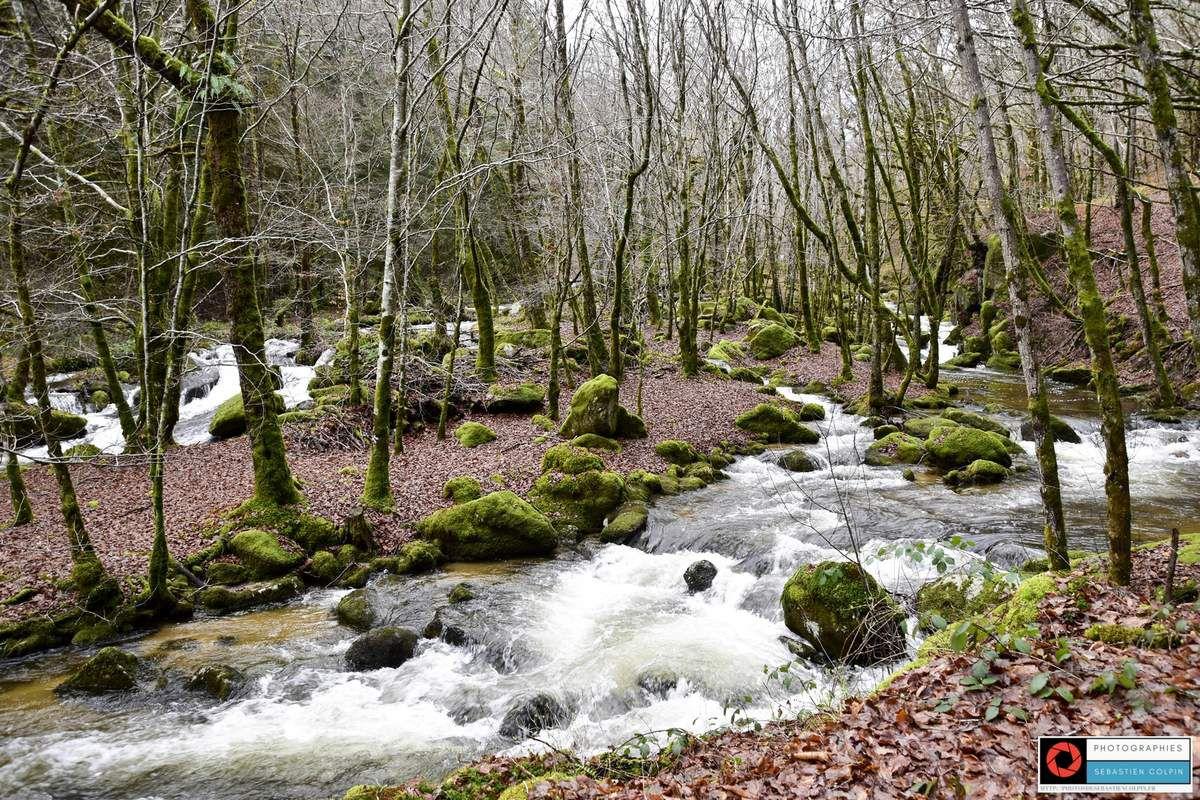 Cascades du Deiro à Soudeilles, un univers féerique en Corrèze