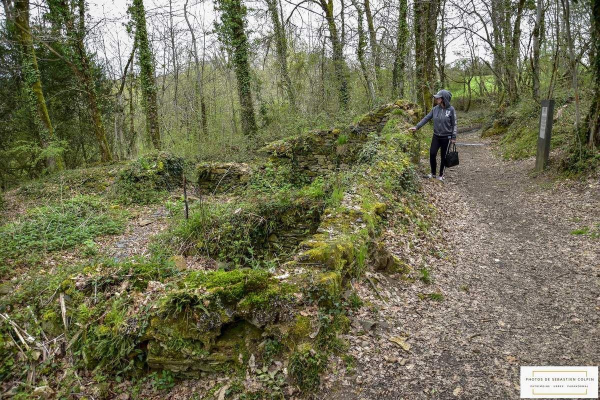 Chemin de mémoire des Saulières à Sainte-Féréole en Corrèze
