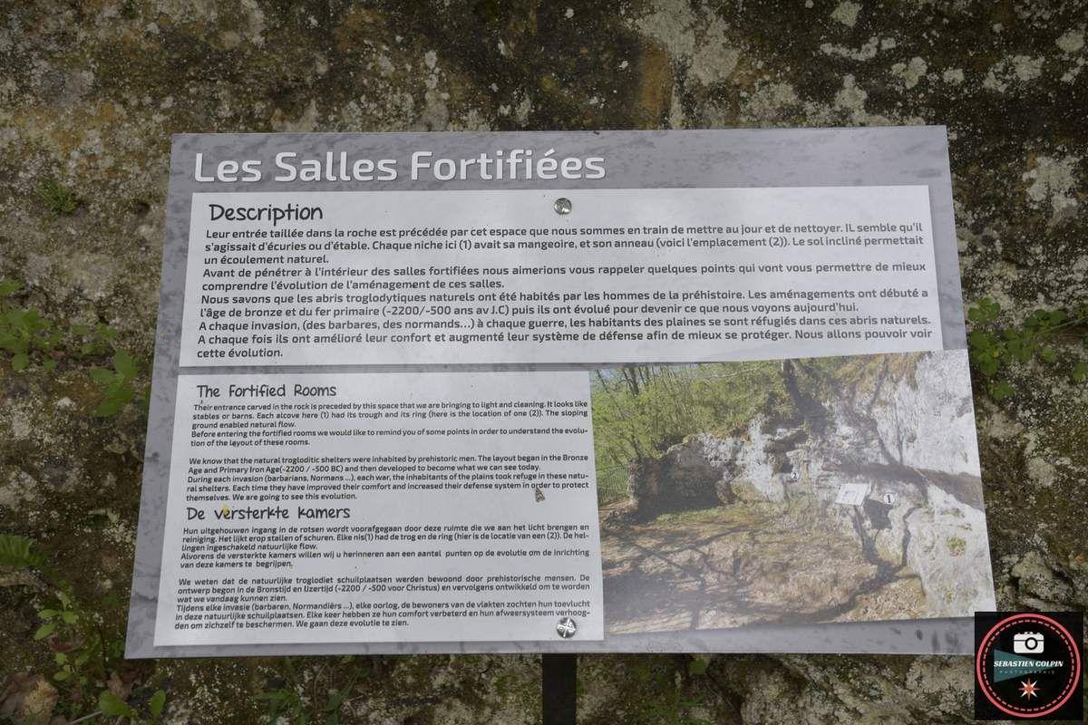 Saint-Léon sur Vézère et le Conquil en Dordogne