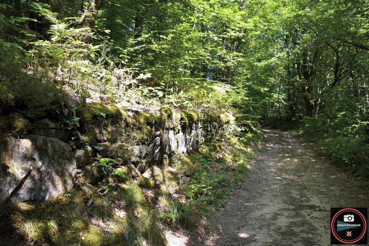 Cascades de Gourlastine à Ménoire en Corrèze
