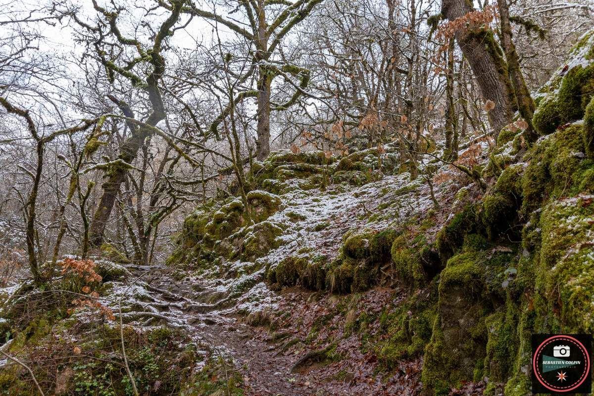 Les Cascades de Murel à Albussac-Forges en Corrèze