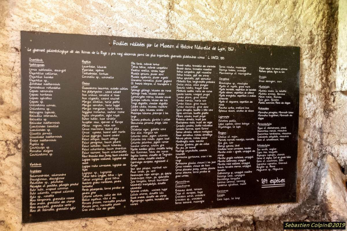 Le Gouffre de la Fage, la merveille du monde souterrain en Corrèze