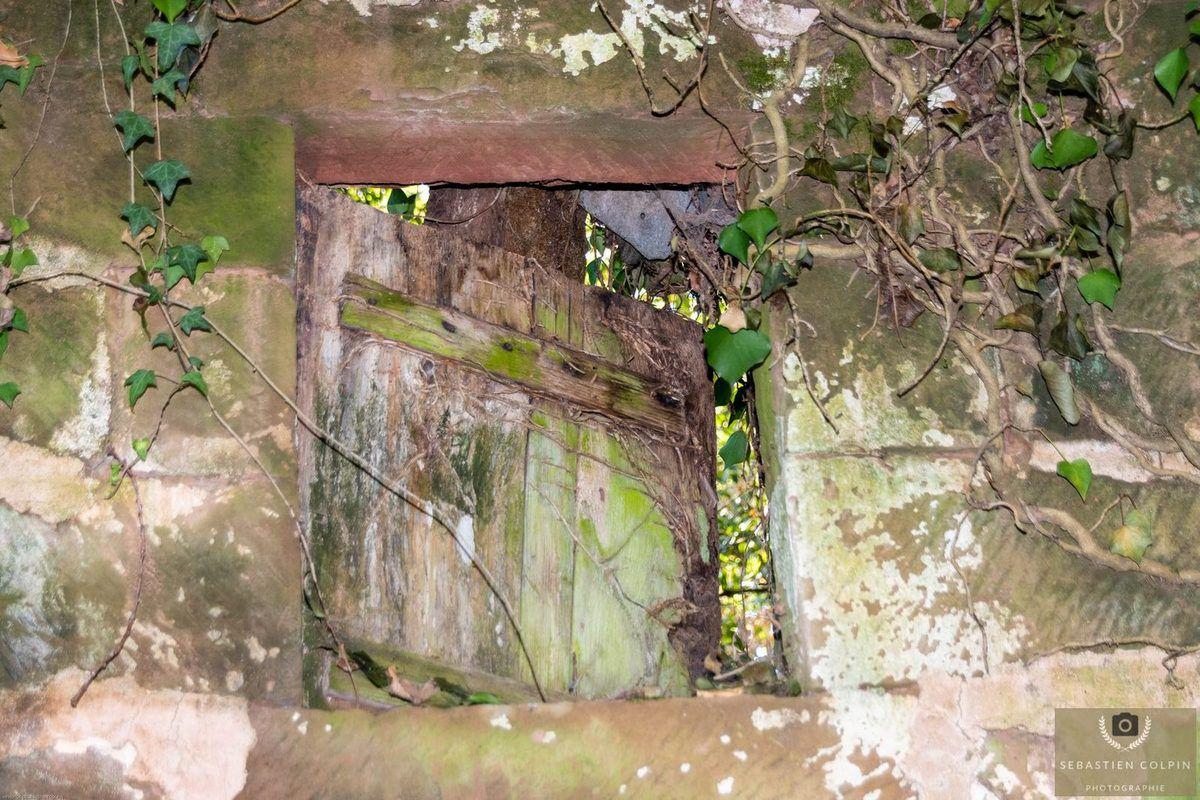 Les Sarcophages de Louignac, site archéologique de la Reynie en Corrèze