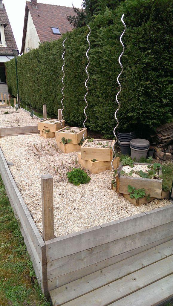 Dernière photo : semis du jour de salades (jeunes pousses), ainsi que carottes et radis alternés.