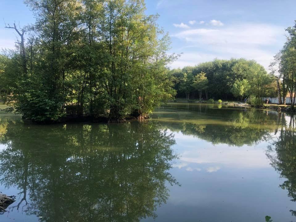 Parc du Bois de l'Etang Baillet en France