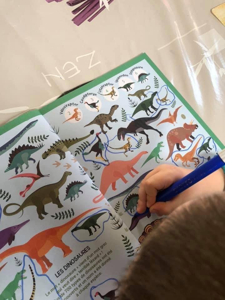 Cherche et trouve Dino Plein de choses à trouver et des intrus à repérer ! Tomawak