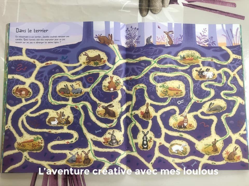 Le grand livre des labyrinthes Dans la forêt Usborne