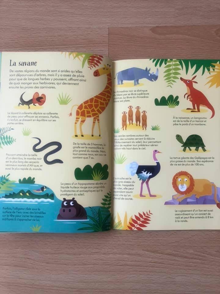 Livre et puzzle Les animaux du monde Usborne