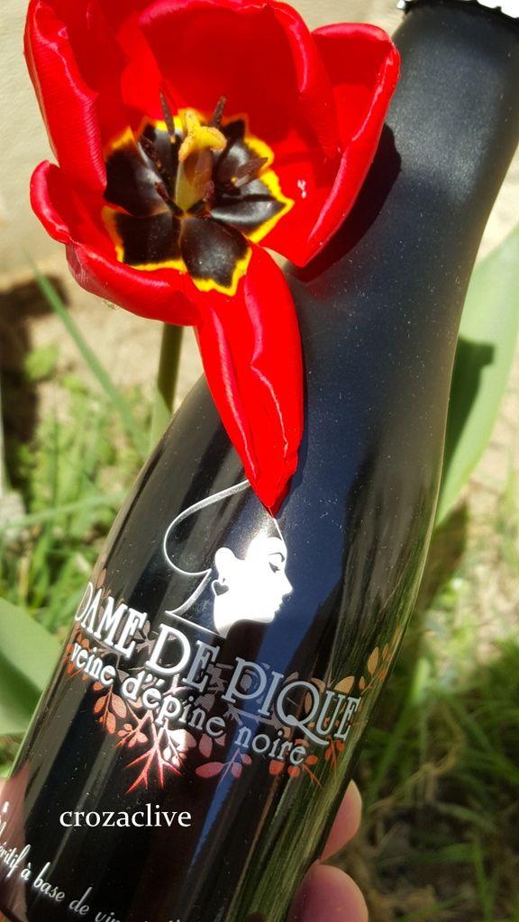 Dame de Pique : la boisson originale et stylée pour les femmes