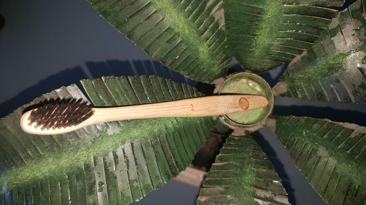 {CONCOURS} La Bambou attitude avec cette brosse à dents Lavish Essentials