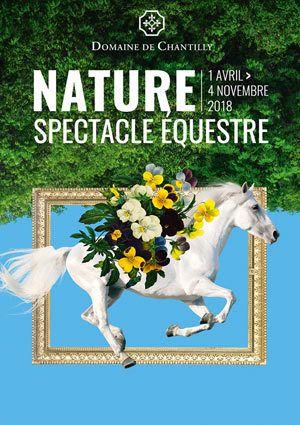 Spectacles équestres nature au Domaine de Chantilly