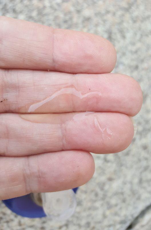 L'hygiène des mains c'est systématique avec Maëllya