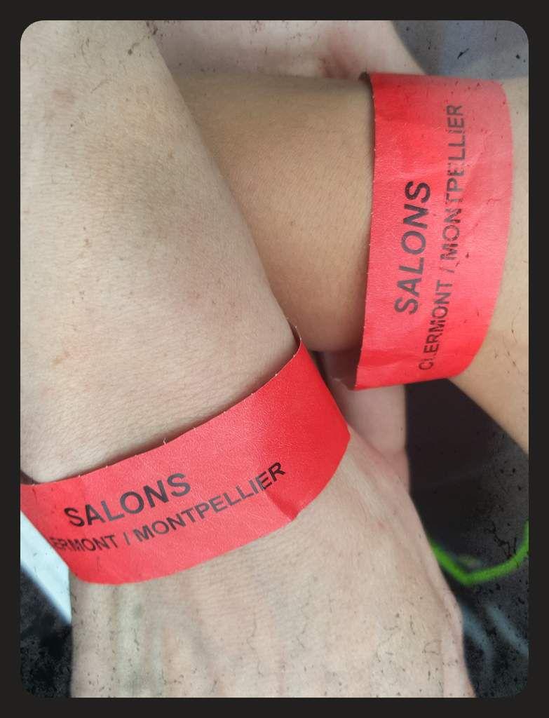 Vivre un match de rugby de l'ASM en loges : Salon Edouard à Clermont Ferrand
