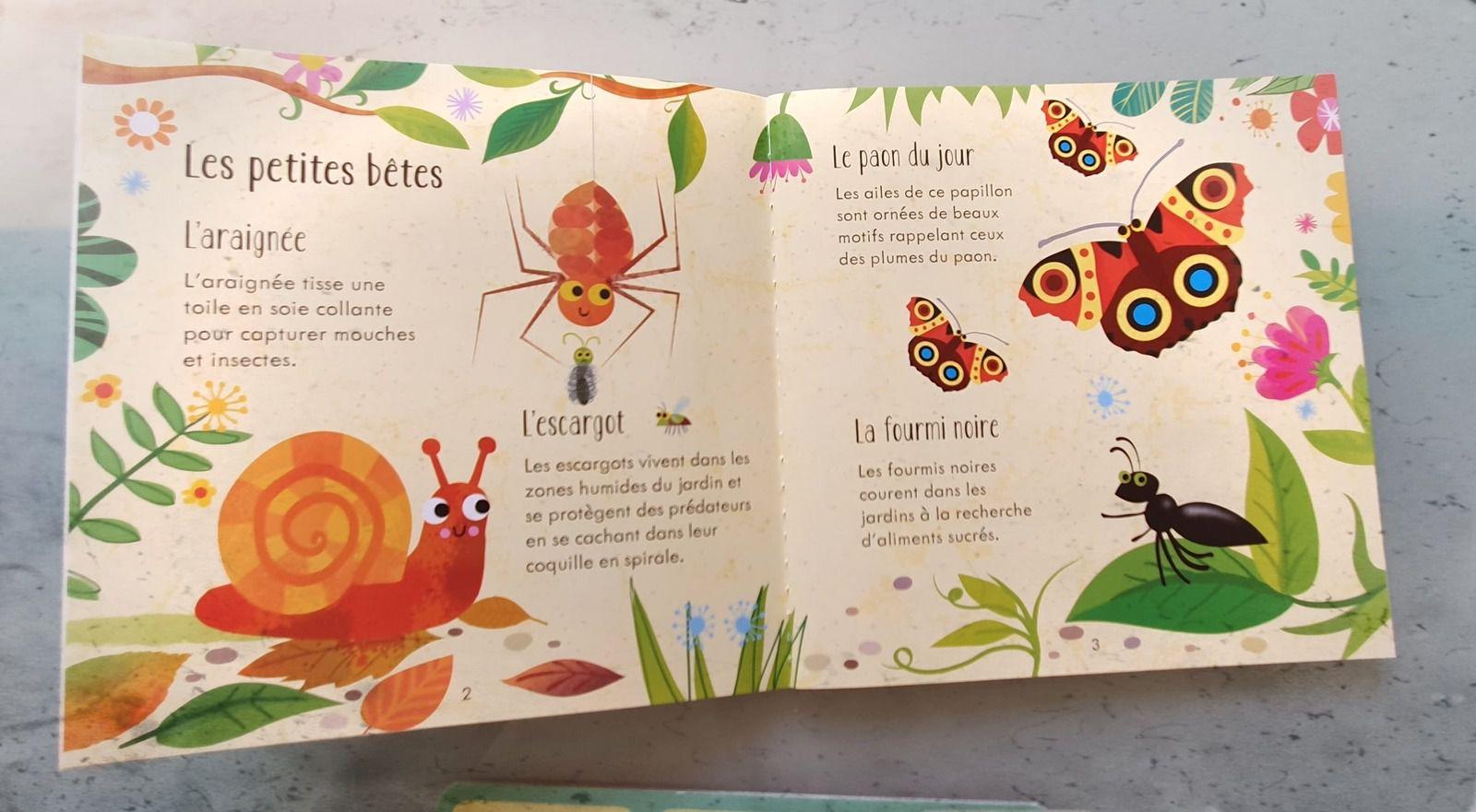 Les nouveautés sur Les Petites bêtes Editions Usborne