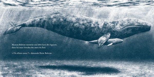 Petite baleine / Jo Weaver. - kaleidoscope
