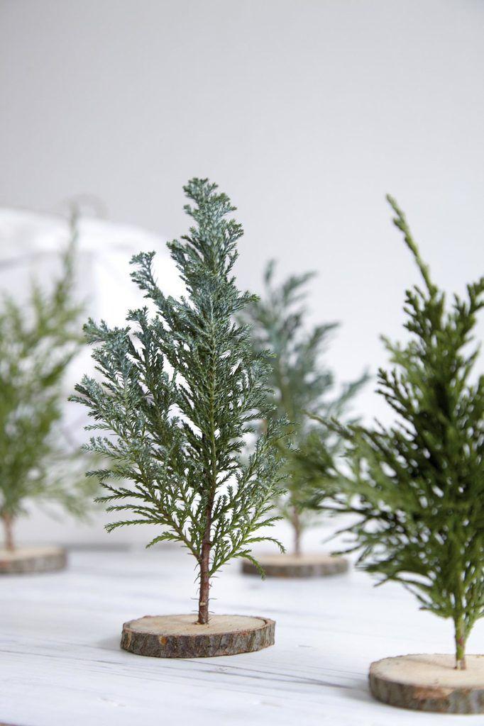 Forêt de mini sapins pour décorer la table de Noël >