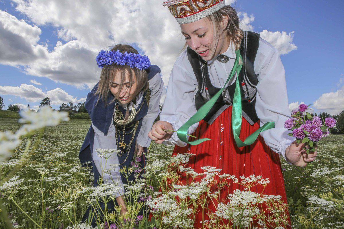 Les jeunes filles se confectionnent des couronnes de fleurs dans les champs