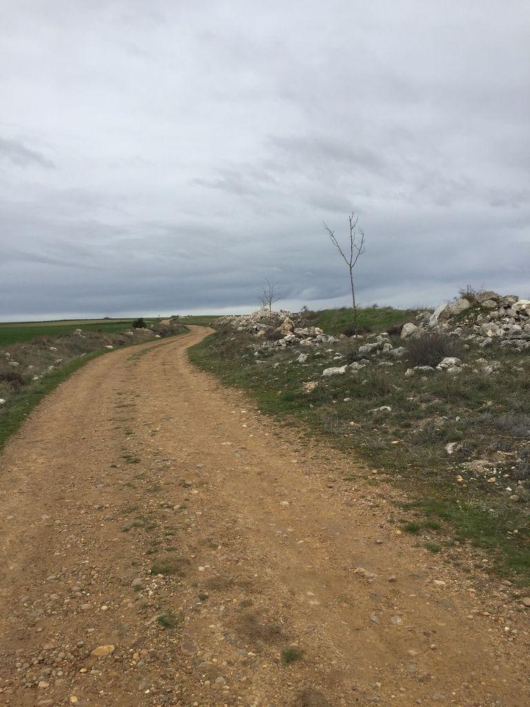 COMPOSTELLE 2018: JOUR 12 :  BURGOS - CASTR0JERIZ (39 kms)