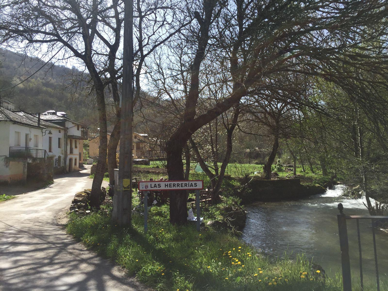 JOUR 21 : CACABELOS - LOS HERRERIAS (30 kms)