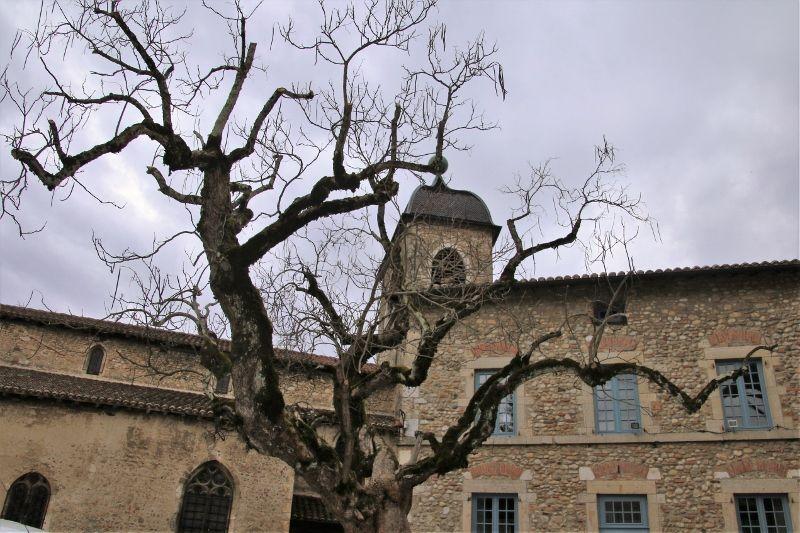 Pérouges , cité médiévale