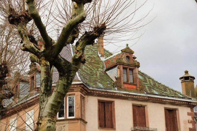 Chateau de TURCKHEIM - Dachstein