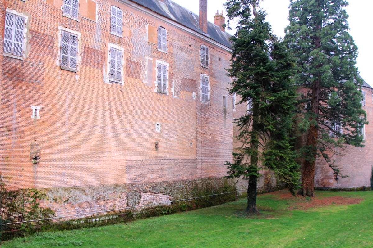 Chateau de Saint fargeau