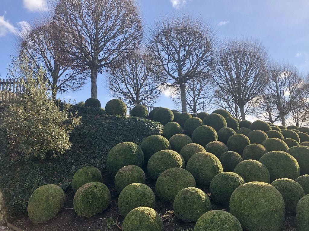 Jardins du chateau d'Amboise