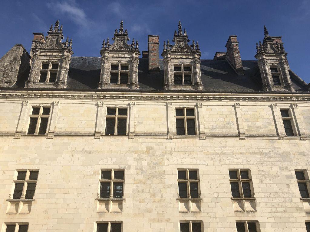 Chateau d' Amboise