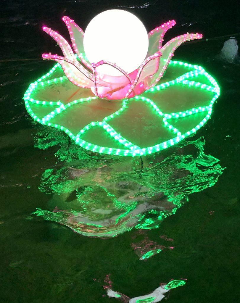 Baie des lumières Nice la CHINE