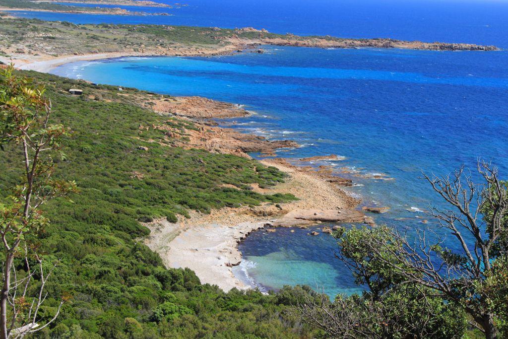 Méditerranée en Corse du Sud