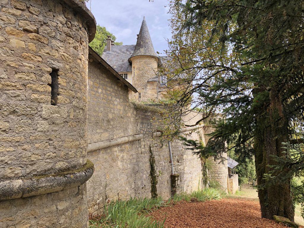 Chateau du Puy Perpezac le Blanc