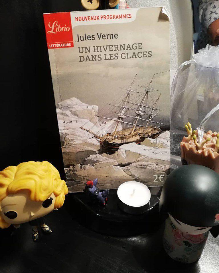 Un hivernage dans les glaces - de Jules VERNE