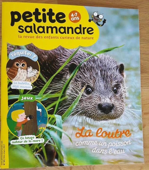 Magazine La Petite Salamandre