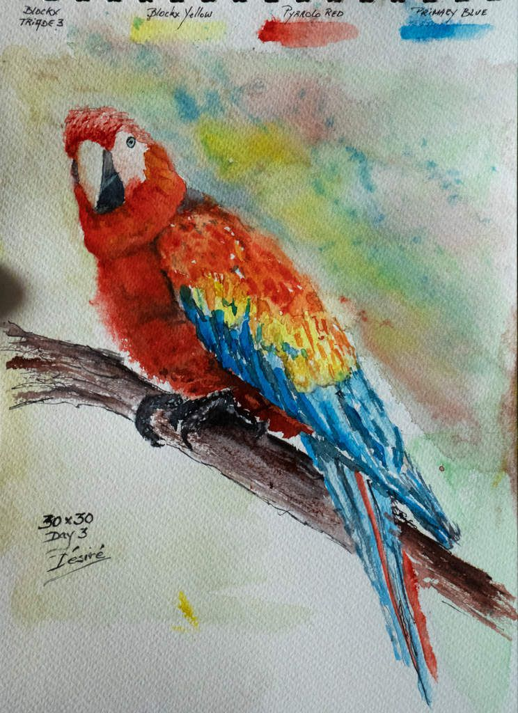 Watercolor painting of a parrot using the High Contrast triad