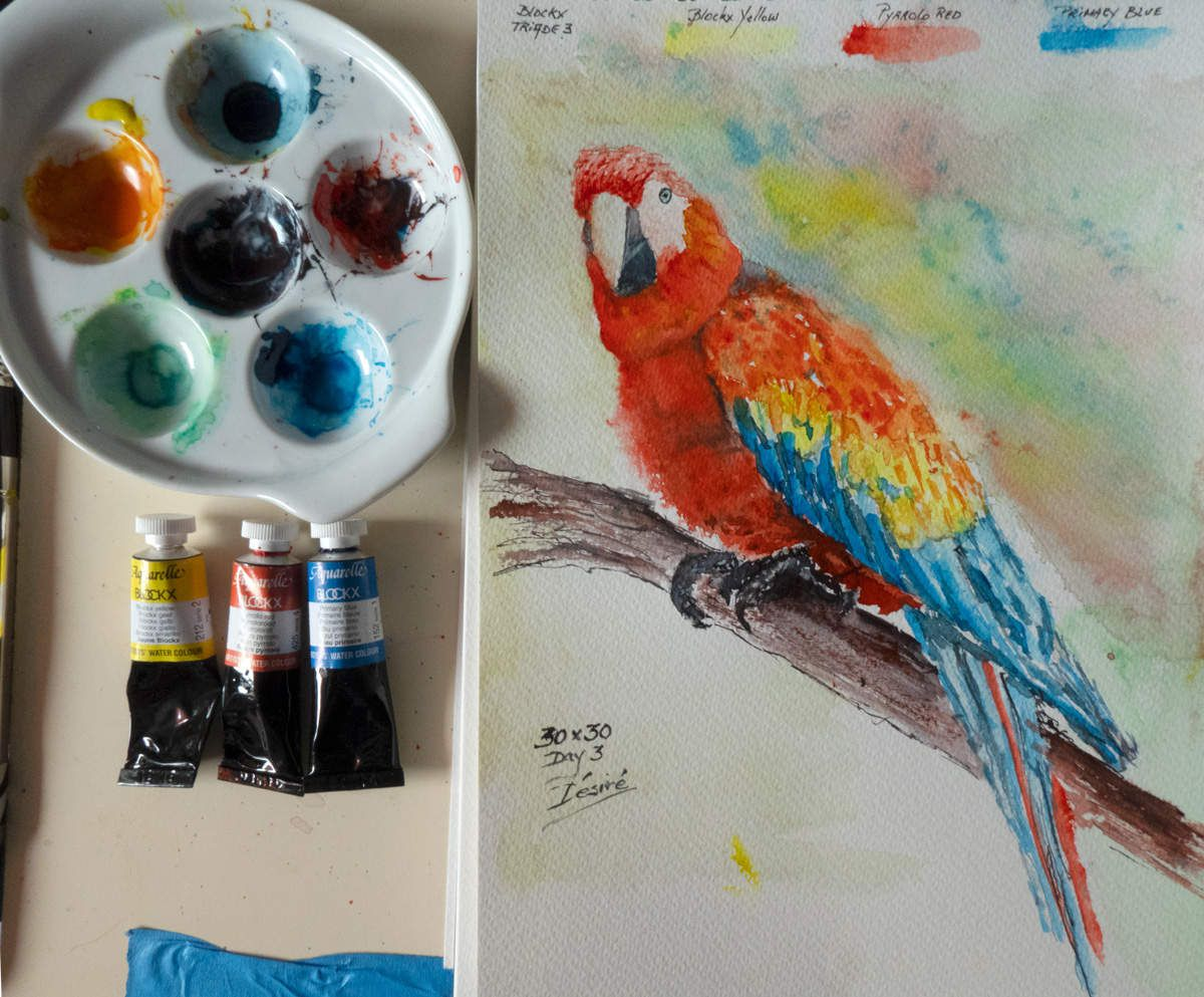 My Triad Mixing Palette I used for painting the Parrot