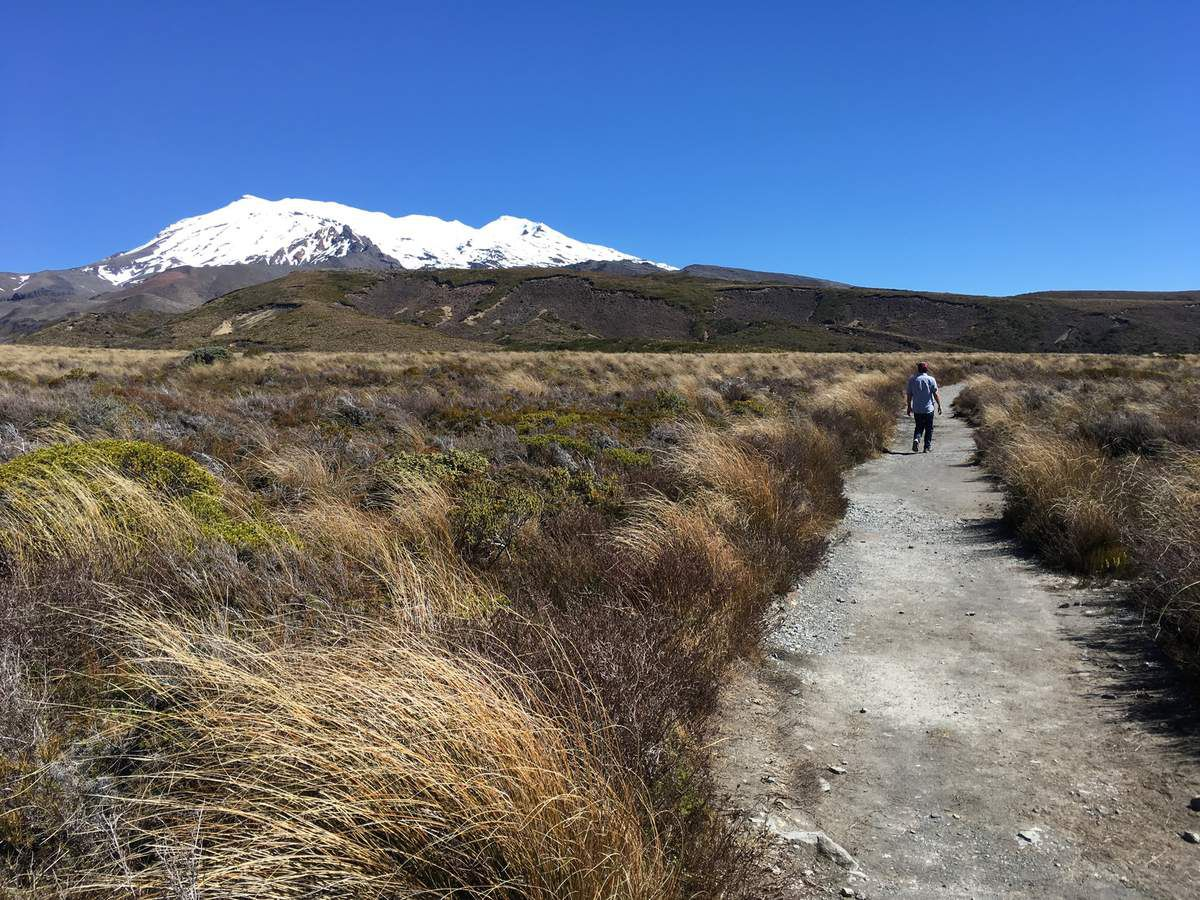 Un paysage désertique, vierge, classé au Patrimoine Mondial de l'Unesco. C'est le 1er Parc National créé en NZ.